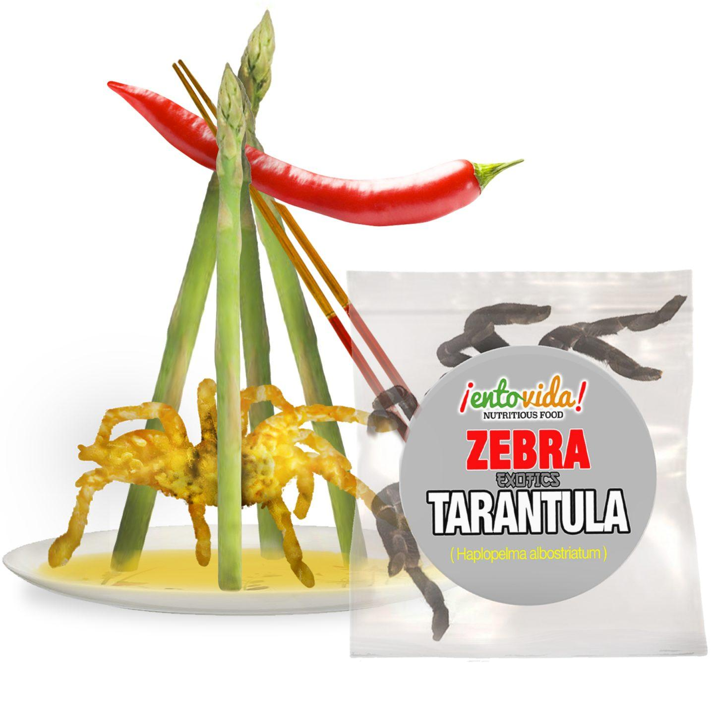 Edible Insects | EntoMarket | Bugs You Can Eat For Sale Online