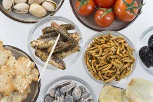 Edible Bugs Nutrition